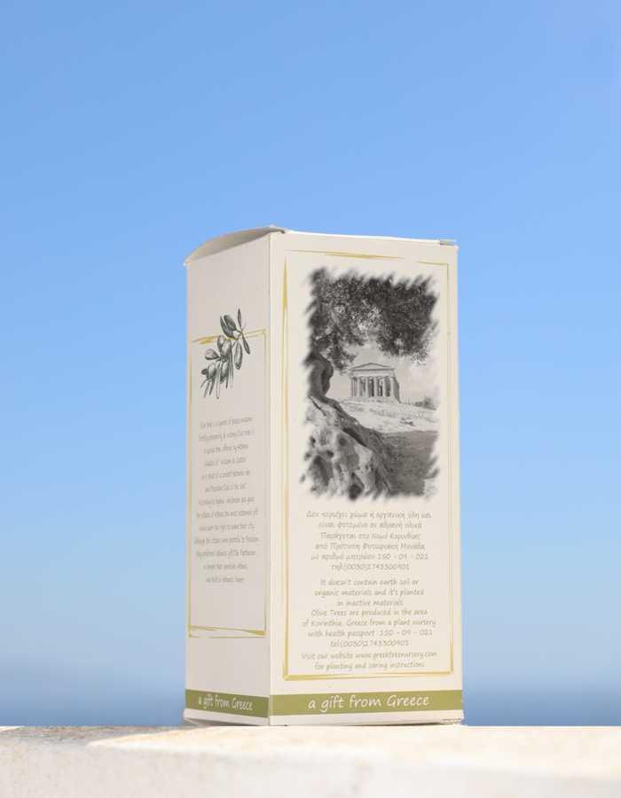 Sample of Elian gift backside box