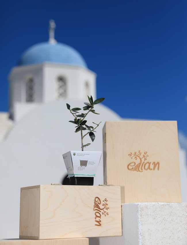 Elian small wooden box gift 1