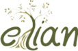 Elian logo iPhone retina icon