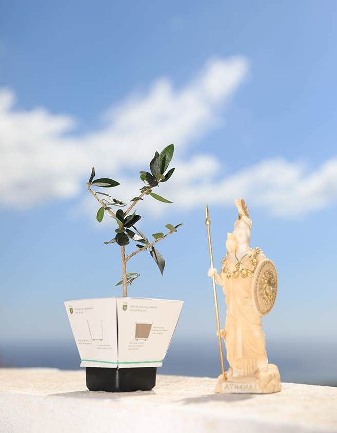 Elian-Ancient-Greek-Statues-Gifts
